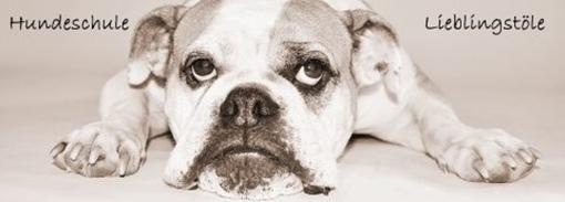 Hundeschule-Lieblingstöle